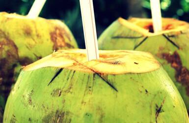 Agua de coco en el embarazo: pros y contras